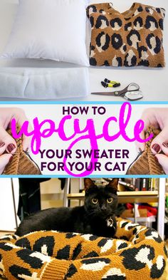 Upcycle one of your old sweaters to make a nice DIY bed for your precious pet. Plus, you'll make room for new sweaters.