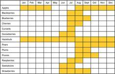furit in season chart, BC
