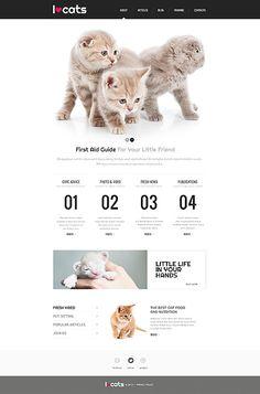 Cat Responsive Website Template #cats #webdesign #RWD http://www.templatemonster.com/website-templates/45731.html?utm_source=Pinterest&utm_medium=timeline&utm_campaign=ctrespth