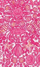 Lilly Pulitzer Background 16