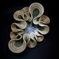 Ceramics, Valerie Seaberg, Artist, Sea Form, glazed stoneware, woven with horsehair & waxed thread, 7 x 13 x 10 in.