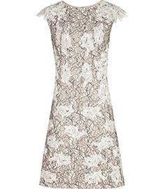 Tamzin Neutral Lace Dress - REISS
