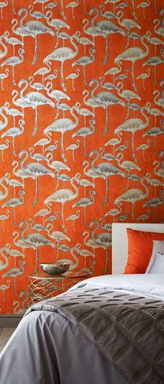 Flamingo Beach Calypso Designer Wallpaper for my grey and orange room!