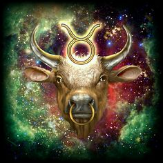 Zodiac Tauro | by: Ciro Marchetti