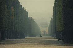 I used to walk here once a week.  Schoenbrunn Palace, Vienna, Austria