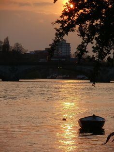 Kew Bridge at sunset from Strand on the Green, West London.