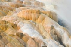 Colorful travertine deposits at Palette Springs of Mammoth Hot Springs Yellowstone National Park by Alan Majchrowicz
