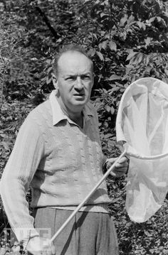 Author Vladimir Nabokov hunting for lepidoptera (butterflies)