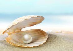 La perla, entre el dolor y el amor