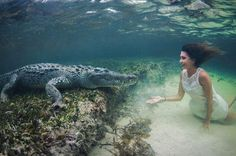 Model comes face-to-face with crocodiles as she swims with huge reptiles http://www.mirror.co.uk/news/weird-news/bikini-model-close-encounter-crocodiles-6452772 …