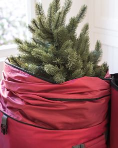 """Designed exclusively for Balsam Hill™, this burgundy mini Christmas tree storage bag features two expandable sections to fit topiaries measuring 48"""" to 72"""" in height."""