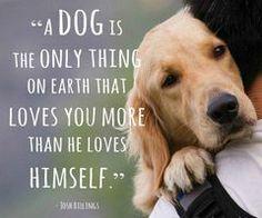 Aww! I love dogs ♥~   via Facebook