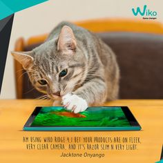 Wiko Ridge 4G is tough yet beautiful. Show some love for Wiko Ridge 4G.