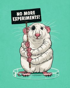 I fully support the termination of animal testing & try my hardest to only by products from companies who are cruelty free.
