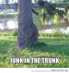 Junk in the trunk.