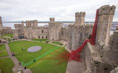 CAERNARFON, WALES - OCTOBER 10: The poppy sculpture Weeping Window opens at Caernarfon Castle as part of a UK-wide tour organised by 14-18 NOW on October 10, 2016 in Caernarfon, Wales. 'Weeping Window' is part of 'Blood Swept Lands and Seas of Red' by artist Paul Cummins and designer Tom Piper. The full installation of 888,246 ceramic poppies, one to honour every death in the British and Colonial forces of the First World War, was on display at the Tower of London in 2014.