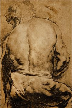 Study of a Male Figure - Sir Peter Paul Rubens