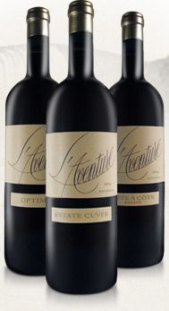 L'Aventure - Paso Robles Wine, Paso Robles Red Blends : Stephan Asseo of L'aventure #wine #vineyard #winemaker