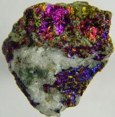 Chalcopyrite (Peacock Ore) and Quartz - Mexico