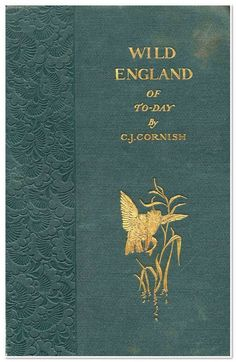 lost-in-centuries-long-gone:Wild England of Today by C. J. Cornish (1895)
