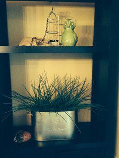 Owl burlap tin and greens