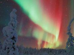 Descubre los paisajes más espectaculares de Finlandia Helsinki, Night Lights, Menswear, Nature, The World, Finnish Language, Norway, Continents, Tourism