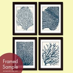 Underwater Sea Coral Collection (Series C) -Set of 4 - 5x7 Prints - Featured in Cream and Navy