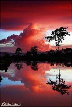 imagens, reflexo, natureza (tudo por email)