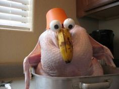 Have a good laugh while you're hiding from your relatives this Thanksgiving. You can thank me later.: 20 Super Funny Turkey Day Photos