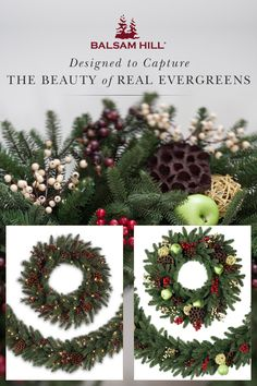Revitalize your holiday traditions with Balsam Hill's California Baby Redwood Rustic & Cranbook Orchard Wreaths and Garlands. Enjoy the beauty of holiday foliage without the hassle of shedding needles. Save up to 50% & get free shipping in our Christmas in July Sale. #ChristmasinJuly