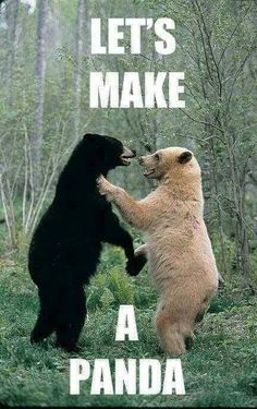 Please go ahead, Pandas are Awesome.