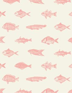 Fishes in pink