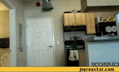 When a prank goes better than you could have imagined. | 31 GIFs That Will Make You Laugh Every Time