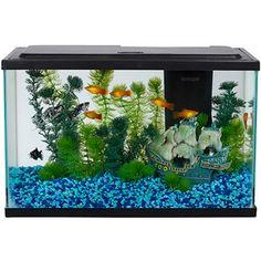 Aquariums on pinterest fish tanks aquarium and aquascaping for 5 gallon fish tank walmart