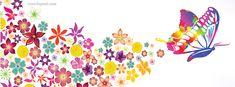 Colorful Butterfly Flowers Facebook Cover CoverLayout.com