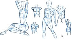 Bones in the Human Body - Video Lesson in the Drawing Academy ...