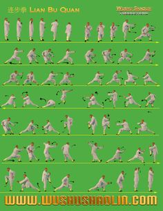 Northern Shaolin Kung Fu Forms - Learn more about New Life Kung Fu at newlifekungfu.com