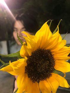 Thanx sa flower blaster ♡♡ HAHAHAHHAHAHA King Of Spades, Vsco, Grunge, Phone Screen Wallpaper, Happy Pills, Flower Aesthetic, Aesthetic Wallpapers, Friends, Like4like
