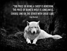 Wolf Quote                                                                                                                                                                                 More