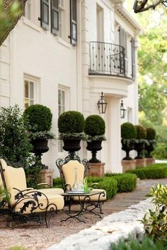 Black French garden urns planted with buxus boxwood formal French garden #BoxwoodLandscape