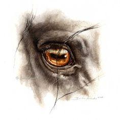 Amber by AtelierArends.deviantart.com