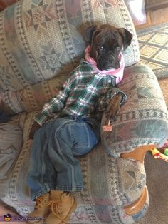 Kenzie: My one year old boxer puppy, Tobee is dressed as a farmer in a costume my boyfriend and I put together. Photo 2 of 3.