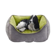 Soft Touch PET63RC3307 Buster Reversible Rectangular Cuddler >>> See this awesome image  : dog beds