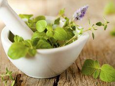 Hoje temos um guia com tudo o que precisas de saber sobre os benefícios das plantas medicinais, frutas e flores para a pele. Para ler e partilhar.