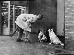 rench Actor Jacques Tati Talking to a Couple of Dogs, Yale Joel