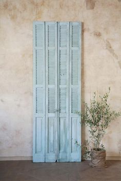 Vintage Shutters!  Weathered pale duck-egg blue finish... I'm totally diggin' these!