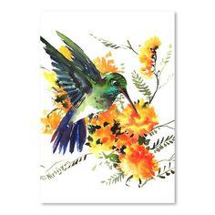 Americanflat Hummingbird 6 Art Print