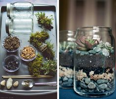 zen terrarium with mason jars how to plant your own