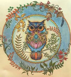 Owl from Johanna Basford Enchanted Forest. Used derwents and Stampin Up pens.