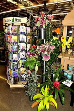 SIERRA ROSE CREATIONS - Dale Hardware Garden Center.